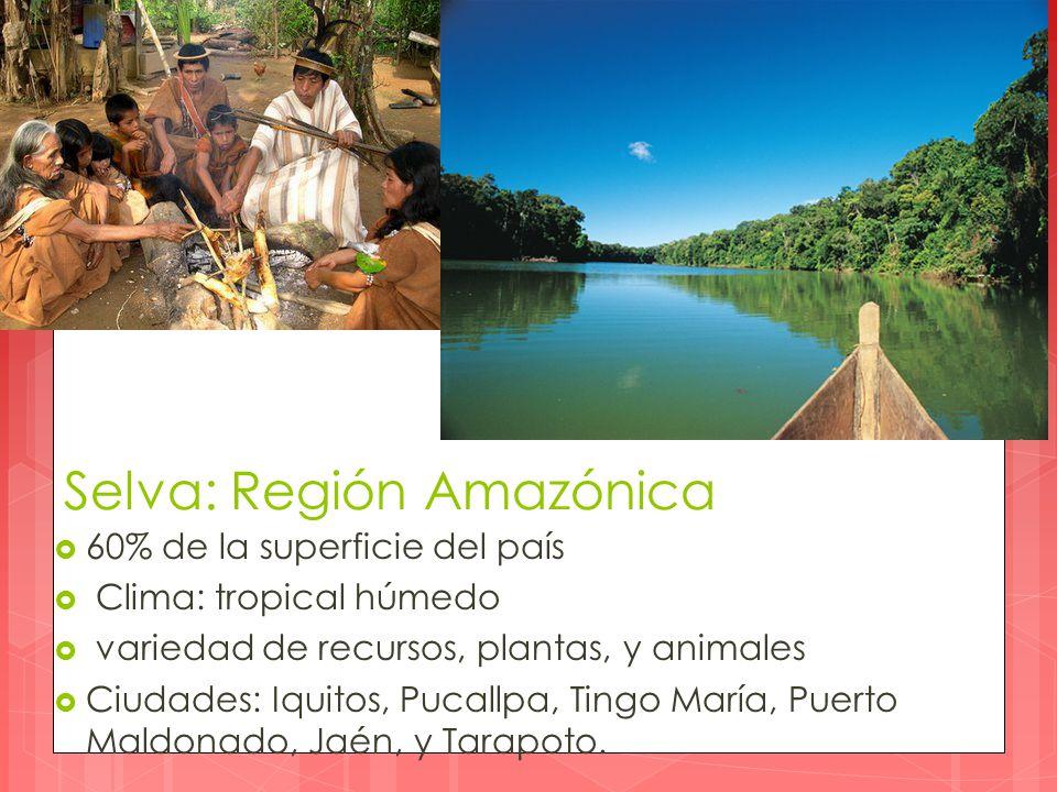 Selva: Región Amazónica  60% de la superficie del país  Clima: tropical húmedo  variedad de recursos, plantas, y animales  Ciudades: Iquitos, Pucallpa, Tingo María, Puerto Maldonado, Jaén, y Tarapoto.