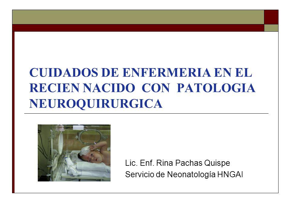 CUIDADOS DE ENFERMERIA EN EL RECIEN NACIDO CON PATOLOGIA NEUROQUIRURGICA Lic. Enf. Rina Pachas Quispe Servicio de Neonatología HNGAI