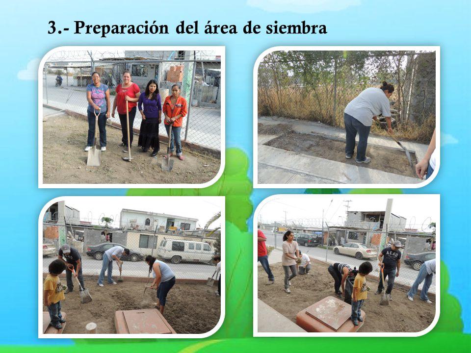 3.- Preparación del área de siembra