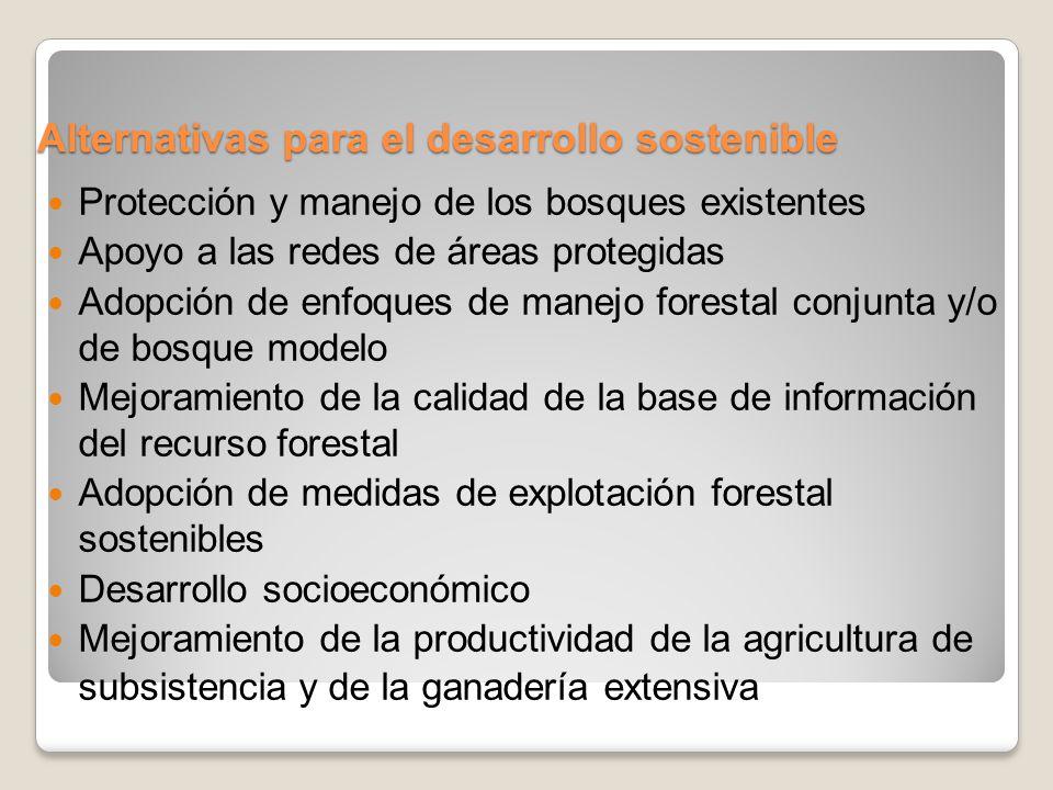 Alternativas para el desarrollo sostenible Protección y manejo de los bosques existentes Apoyo a las redes de áreas protegidas Adopción de enfoques de manejo forestal conjunta y/o de bosque modelo Mejoramiento de la calidad de la base de información del recurso forestal Adopción de medidas de explotación forestal sostenibles Desarrollo socioeconómico Mejoramiento de la productividad de la agricultura de subsistencia y de la ganadería extensiva