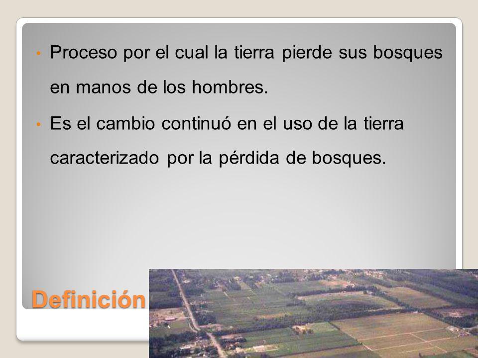 Definición Proceso por el cual la tierra pierde sus bosques en manos de los hombres.