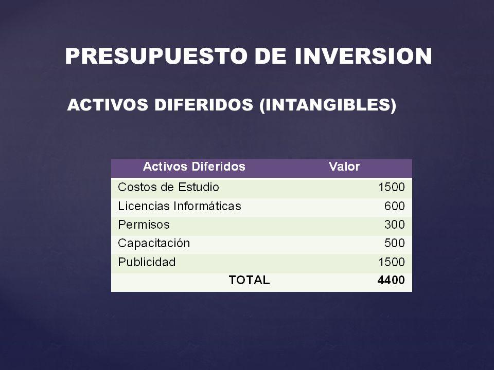 PRESUPUESTO DE INVERSION ACTIVOS DIFERIDOS (INTANGIBLES)