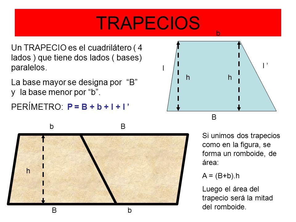 TRAPECIOS b B l l ' h Un TRAPECIO es el cuadrilátero ( 4 lados ) que tiene dos lados ( bases) paralelos.