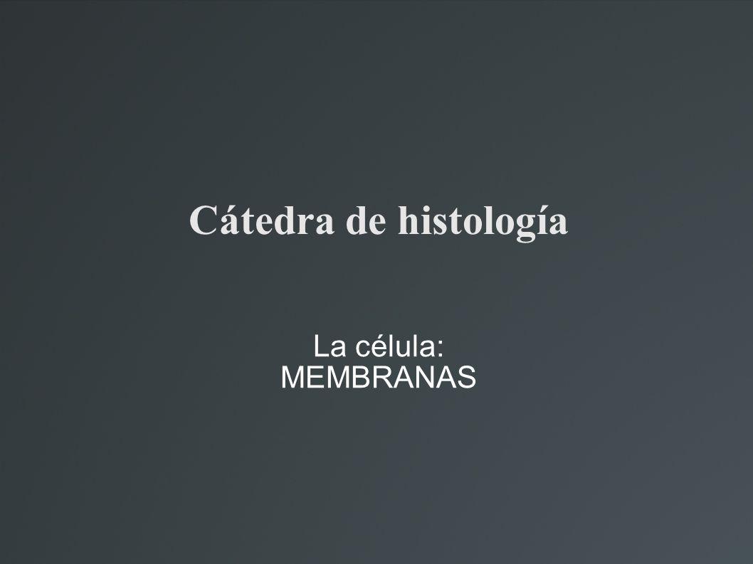 Cátedra de histología La célula: MEMBRANAS