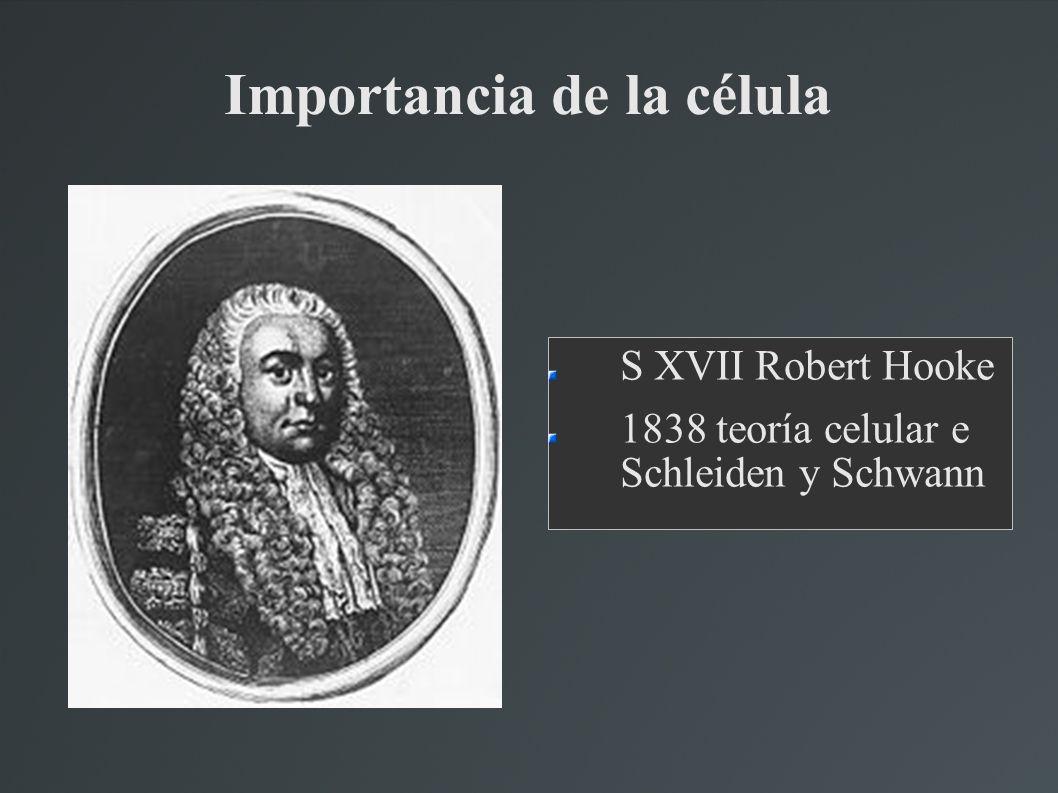 Importancia de la célula S XVII Robert Hooke 1838 teoría celular e Schleiden y Schwann