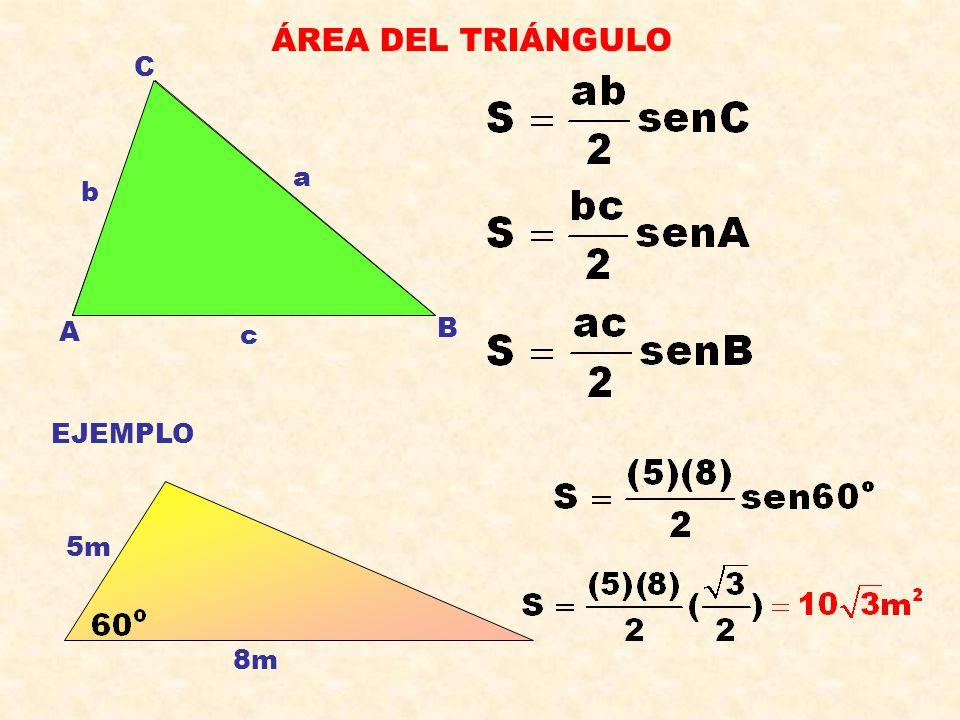 ÁREA DEL TRIÁNGULO A B C a b c EJEMPLO 5m 8m