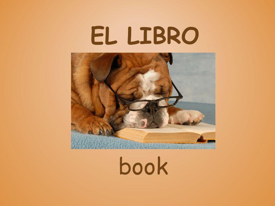 EL LIBRO book