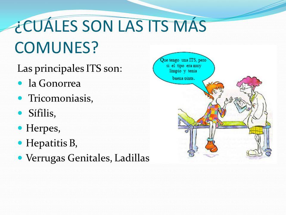 ¿CUÁLES SON LAS ITS MÁS COMUNES? Las principales ITS son: la Gonorrea Tricomoniasis, Sífilis, Herpes, Hepatitis B, Verrugas Genitales, Ladillas, entre