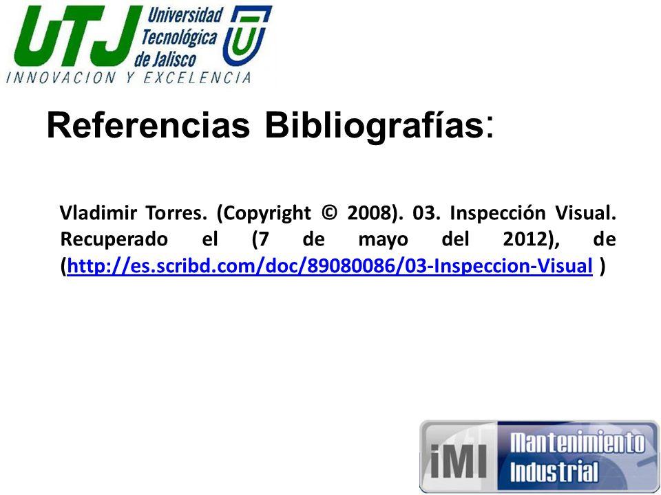 Referencias Bibliografías : Vladimir Torres. (Copyright © 2008).