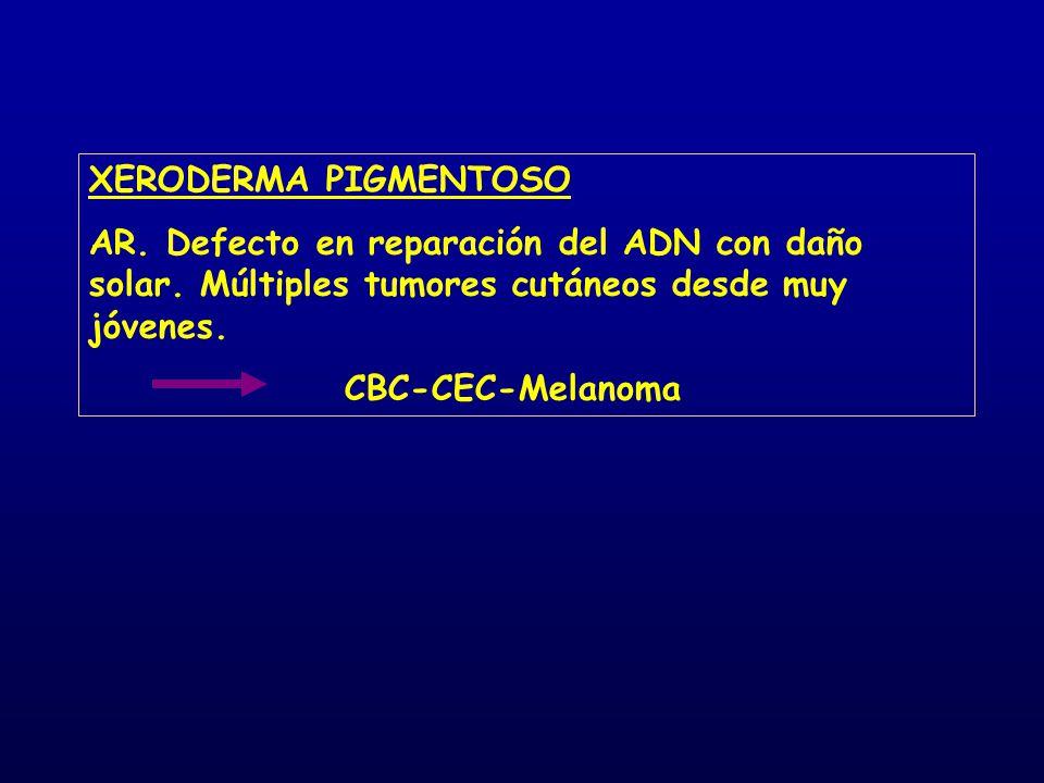 XERODERMA PIGMENTOSO AR. Defecto en reparación del ADN con daño solar. Múltiples tumores cutáneos desde muy jóvenes. CBC-CEC-Melanoma