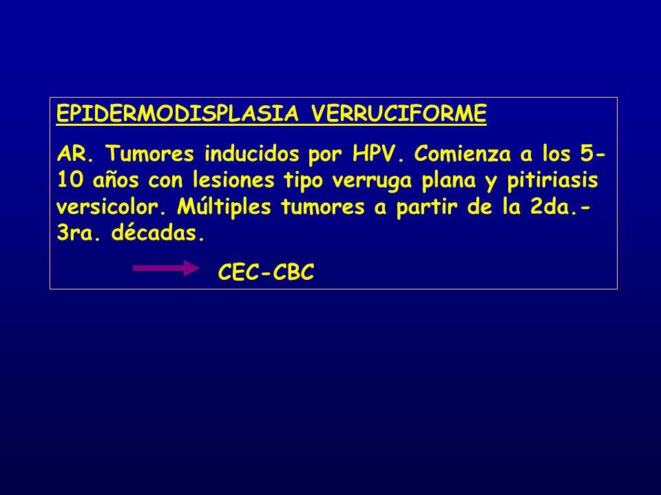 EPIDERMODISPLASIA VERRUCIFORME AR. Tumores inducidos por HPV. Comienza a los 5- 10 años con lesiones tipo verruga plana y pitiriasis versicolor. Múlti