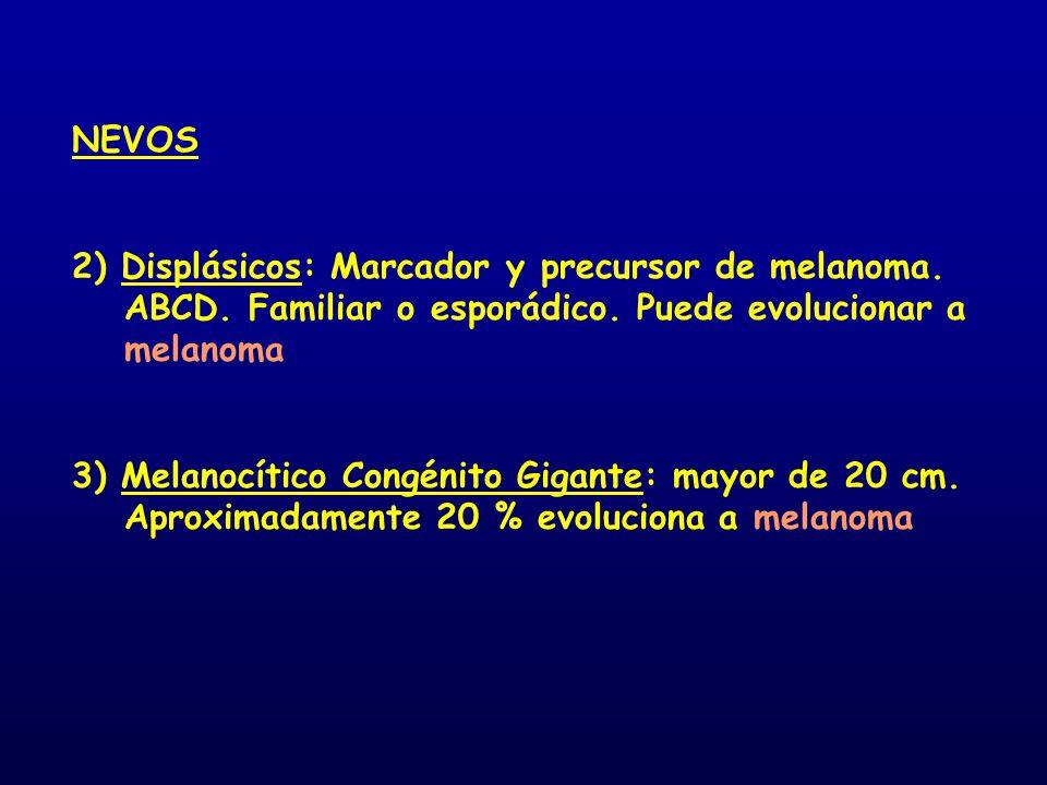 NEVOS 2) Displásicos: Marcador y precursor de melanoma. ABCD. Familiar o esporádico. Puede evolucionar a melanoma 3) Melanocítico Congénito Gigante: m