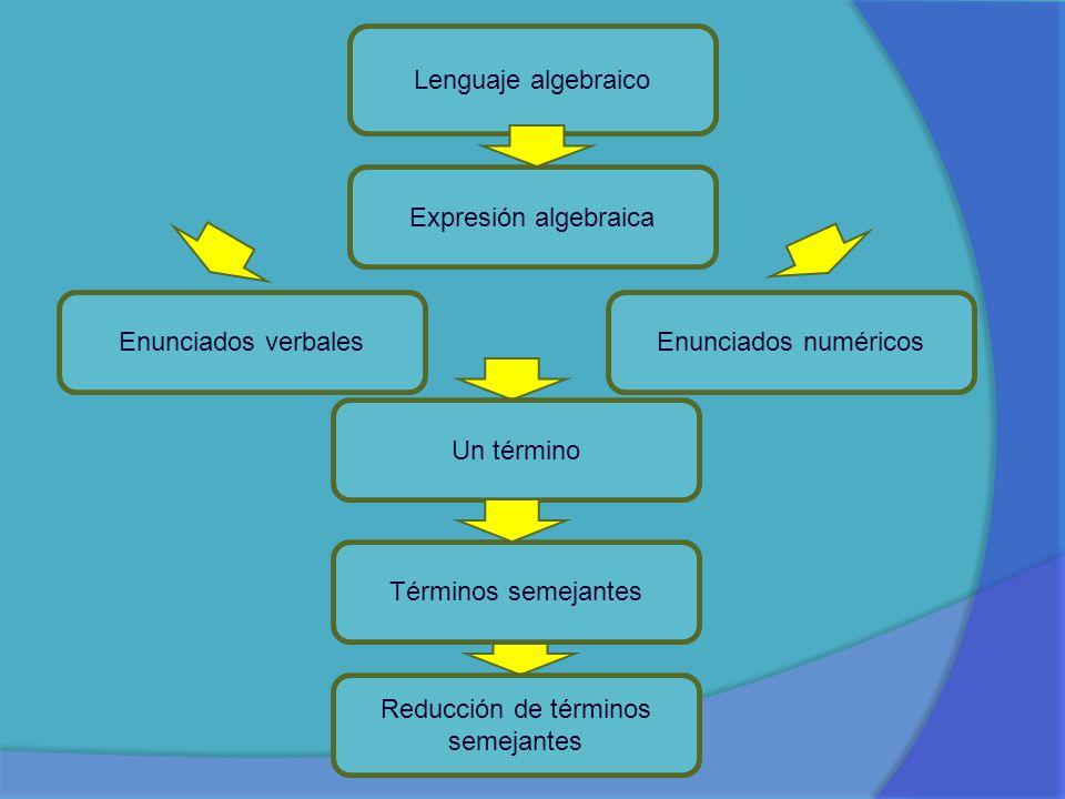Lenguaje algebraico Expresión algebraica Enunciados verbalesEnunciados numéricos Un término Términos semejantes Reducción de términos semejantes