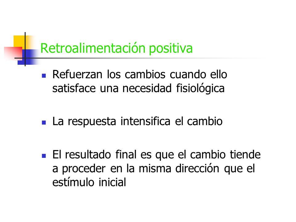 Retroalimentación positiva Los sistemas de retroalimentación positiva son menos comunes Ejemplos: - Contracciones durante el parto