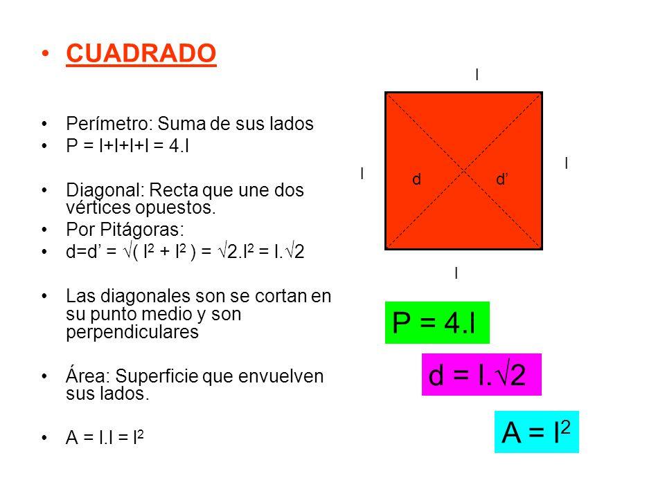 CUADRADO Perímetro: Suma de sus lados P = l+l+l+l = 4.l Diagonal: Recta que une dos vértices opuestos. Por Pitágoras: d=d' = √( l 2 + l 2 ) = √2.l 2 =