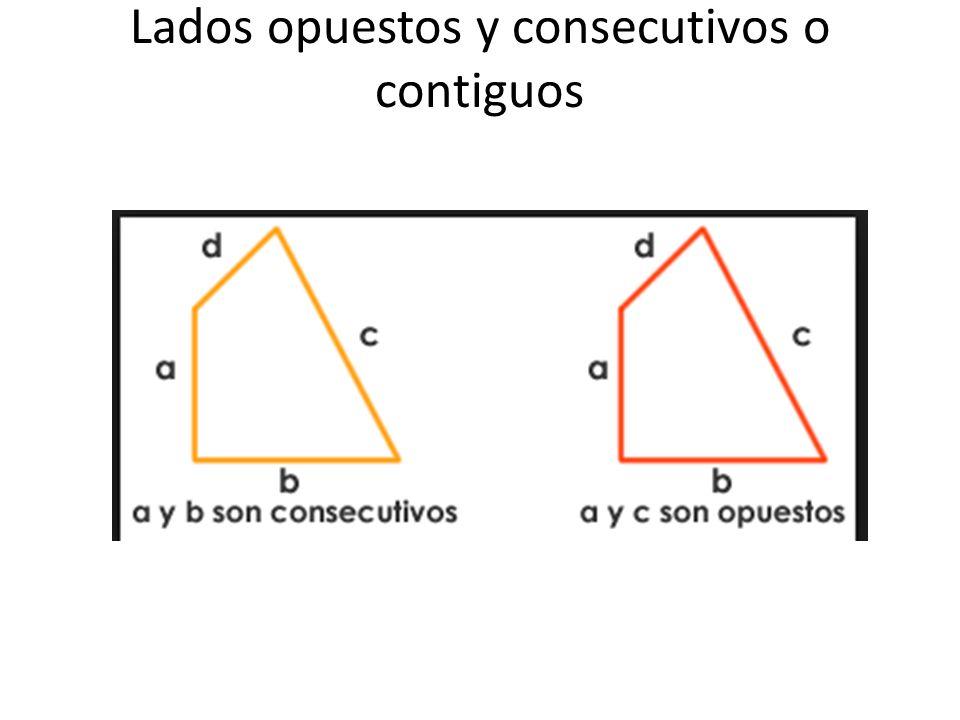 Lados opuestos y consecutivos o contiguos