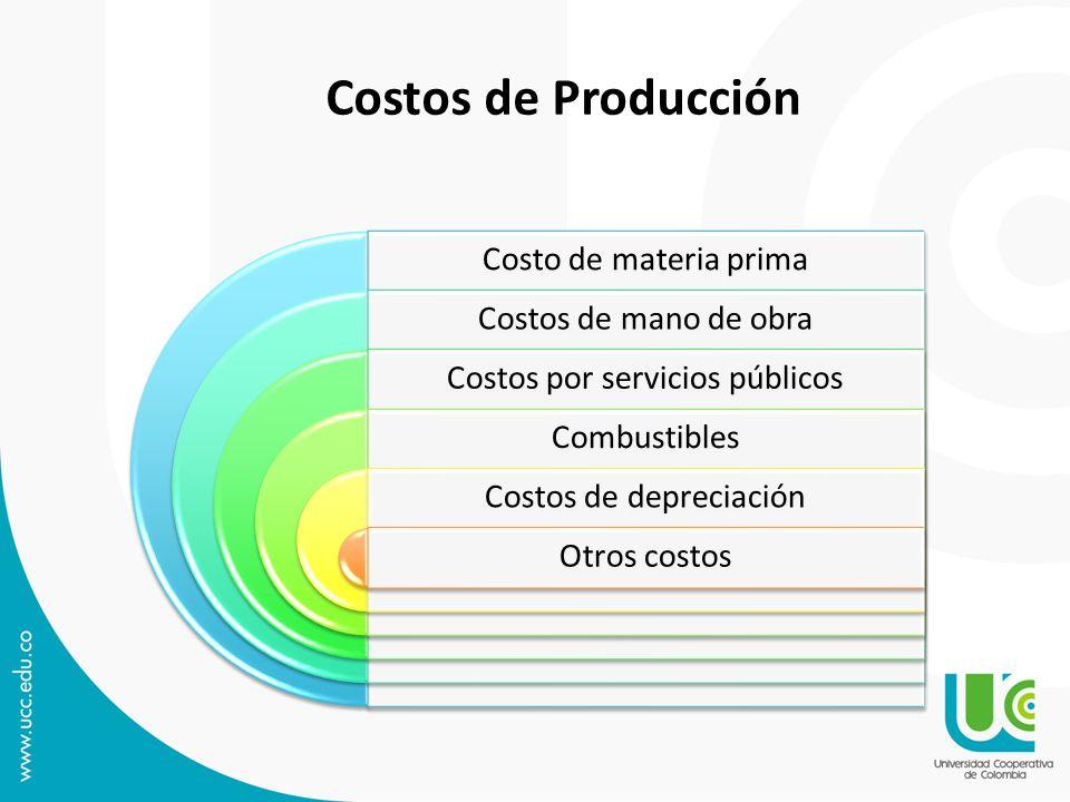 Costo de materia prima Costos de mano de obra Costos por servicios públicos Combustibles Costos de depreciación Otros costos Costos de Producción