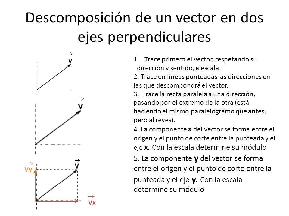 Descomposición de un vector en dos ejes perpendiculares 1.Trace primero el vector, respetando su dirección y sentido, a escala. 2. Trace en líneas pun