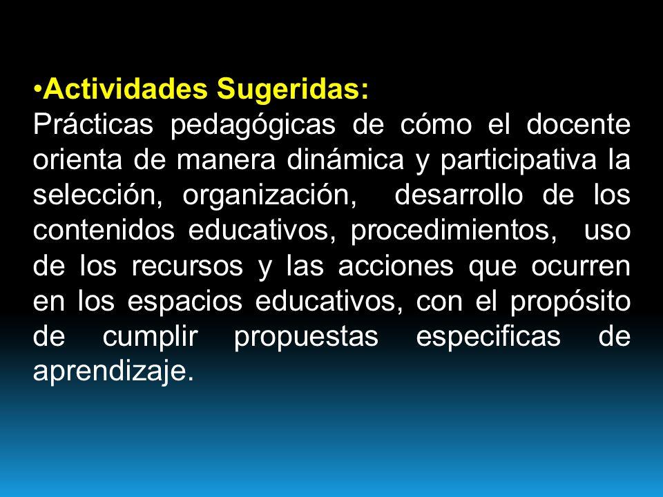 Actividades Sugeridas: Prácticas pedagógicas de cómo el docente orienta de manera dinámica y participativa la selección, organización, desarrollo de los contenidos educativos, procedimientos, uso de los recursos y las acciones que ocurren en los espacios educativos, con el propósito de cumplir propuestas especificas de aprendizaje.