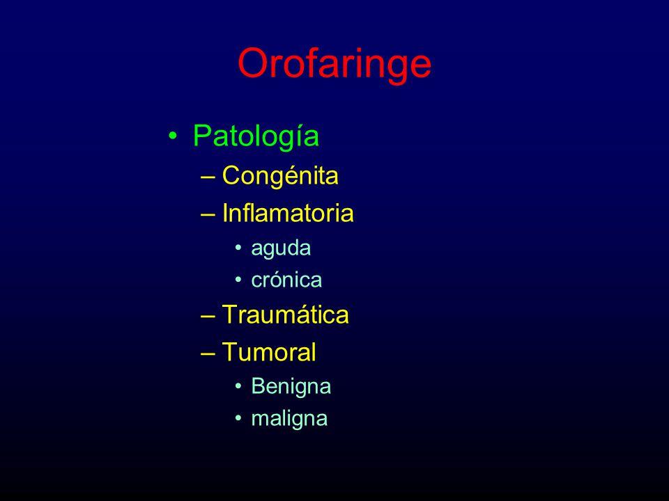 Orofaringe Patología –Congénita –Inflamatoria aguda crónica –Traumática –Tumoral Benigna maligna