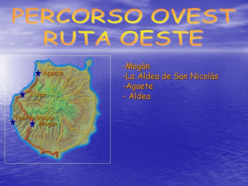 I porti di questo comune (Arguineguín, Anfi del Mar, Puerto Rico e Mogán) presentano le condizioni ideali per organizzare escursioni di pesca sportiva di altura.