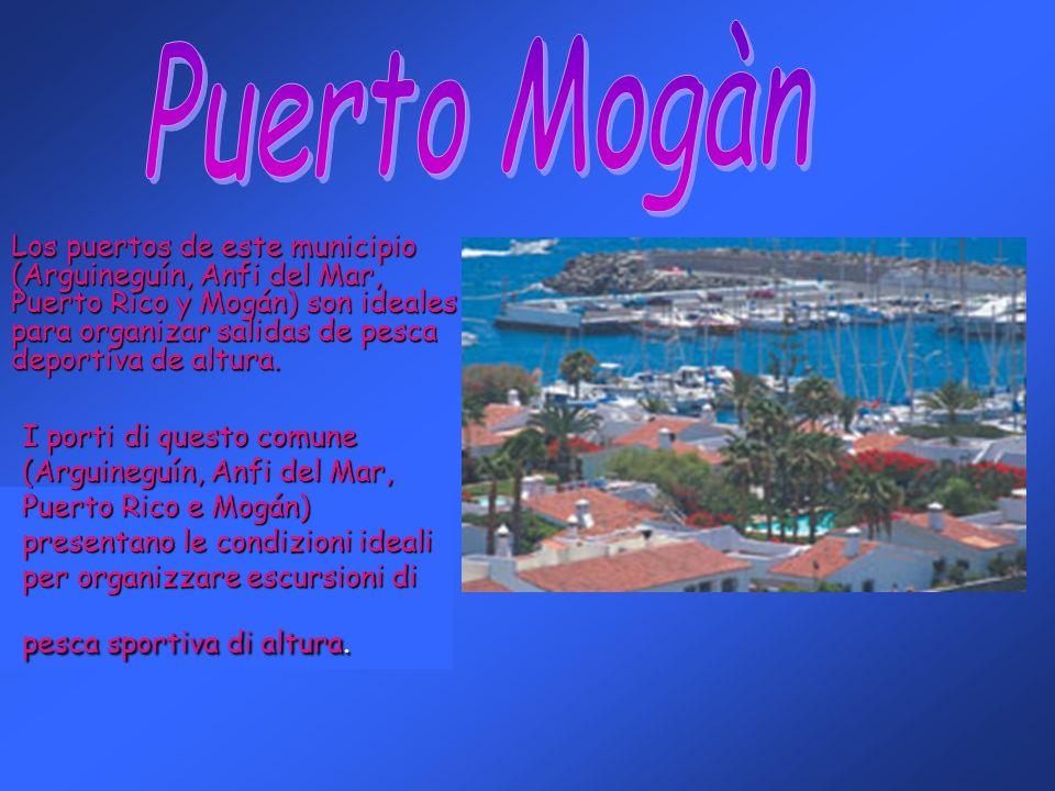 I porti di questo comune (Arguineguín, Anfi del Mar, Puerto Rico e Mogán) presentano le condizioni ideali per organizzare escursioni di pesca sportiva