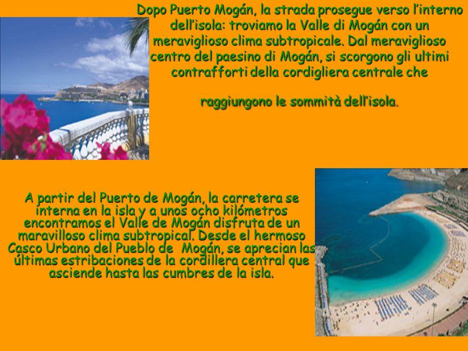 Dopo Puerto Mogán, la strada prosegue verso linterno dellisola: troviamo la Valle di Mogán con un meraviglioso clima subtropicale. Dal meraviglioso ce