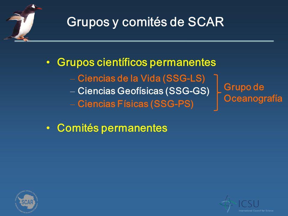 Grupos y comités de SCAR Grupos científicos permanentes Comités permanentes – Ciencias de la Vida (SSG-LS) – Ciencias Geofísicas (SSG-GS) – Ciencias Físicas (SSG-PS) Grupo de Oceanografía