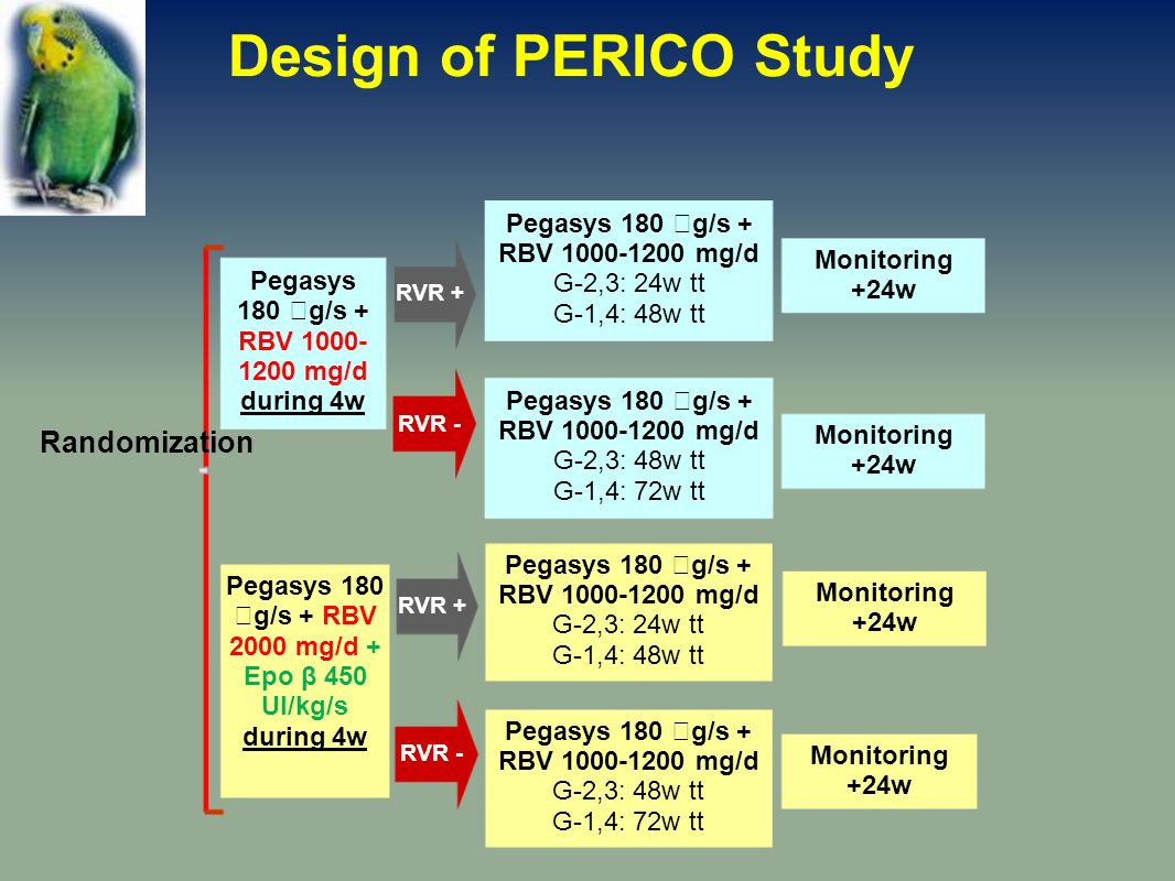 Monitoring +24w Pegasys 180 g/s + RBV 1000-1200 mg/d G-2,3: 24w tt G-1,4: 48w tt Pegasys 180 g/s + RBV 1000-1200 mg/d G-2,3: 48w tt G-1,4: 72w tt Pegasys 180 g/s + RBV 1000- 1200 mg/d during 4w Monitoring +24w RVR - RVR + Monitoring +24w Pegasys 180 g/s + RBV 2000 mg/d + Epo β 450 UI/kg/s during 4w Monitoring +24w Randomization Pegasys 180 g/s + RBV 1000-1200 mg/d G-2,3: 24w tt G-1,4: 48w tt Pegasys 180 g/s + RBV 1000-1200 mg/d G-2,3: 48w tt G-1,4: 72w tt RVR - RVR + Design of PERICO Study