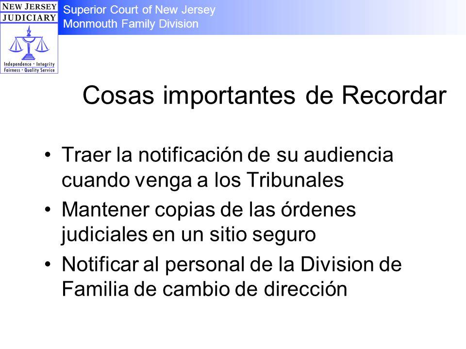 Cosas importantes de Recordar Traer la notificación de su audiencia cuando venga a los Tribunales Mantener copias de las órdenes judiciales en un siti