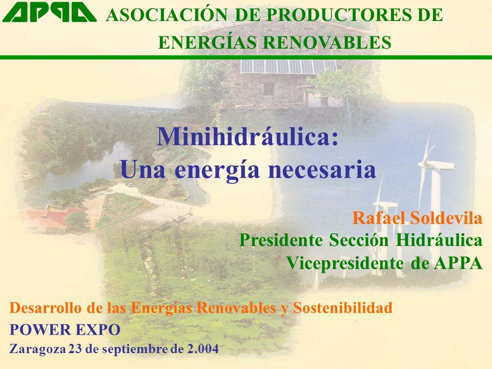 Minihidráulica: Una energía necesaria ASOCIACIÓN DE PRODUCTORES DE ENERGÍAS RENOVABLES Rafael Soldevila Presidente Sección Hidráulica Vicepresidente d