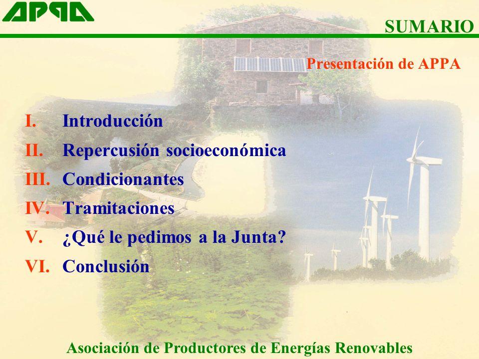Presentación de APPA I.Introducción II.Repercusión socioeconómica III.Condicionantes IV.Tramitaciones V.¿Qué le pedimos a la Junta? VI.Conclusión SUMA