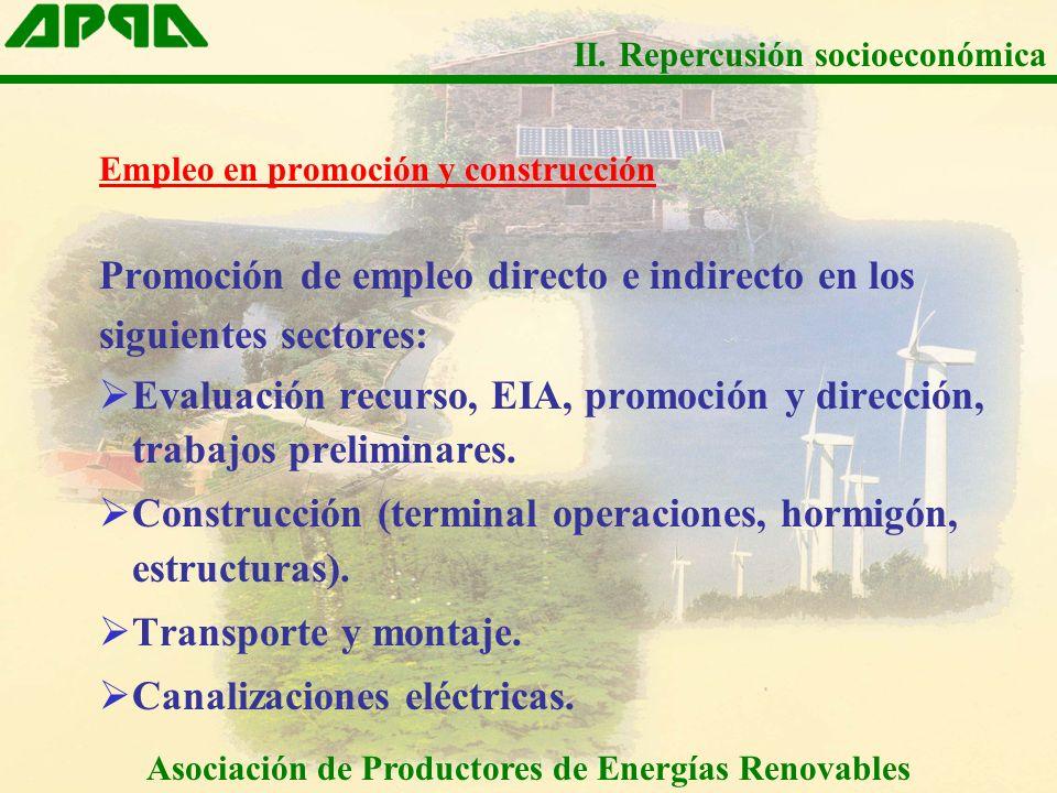 Empleo en promoción y construcción Promoción de empleo directo e indirecto en los siguientes sectores: Evaluación recurso, EIA, promoción y dirección,