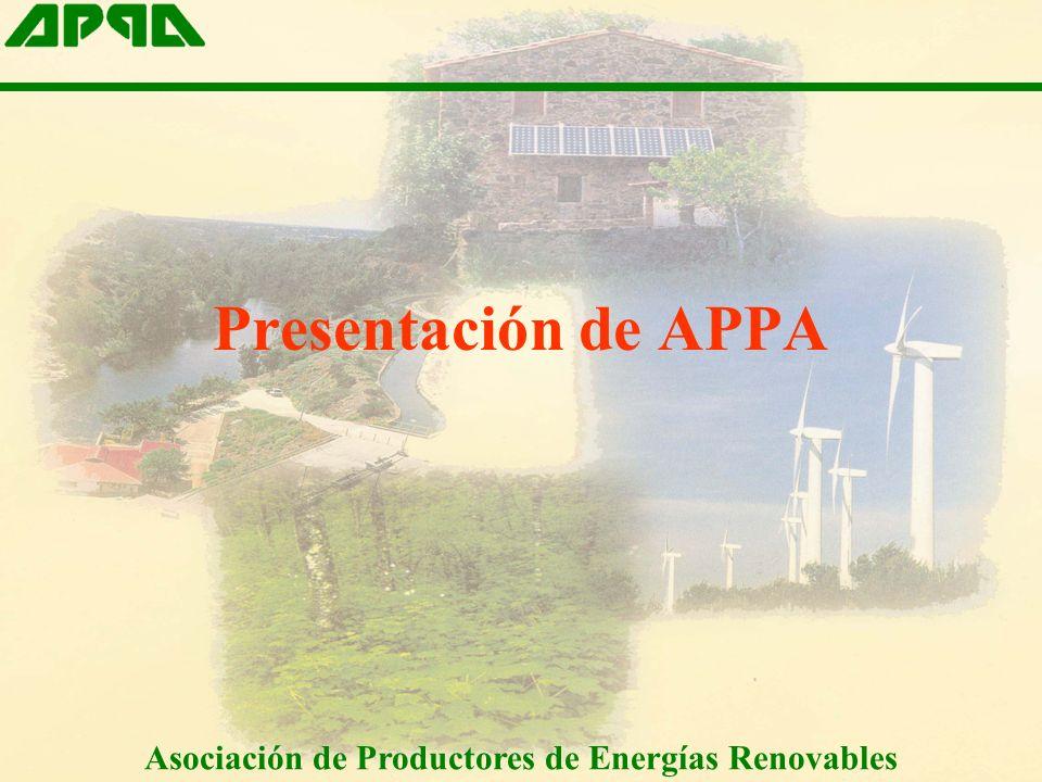 Asociación de Productores de Energías Renovables I. Introducción La energía eólica en España (II)