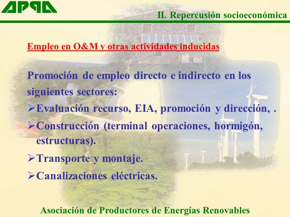 Empleo en O&M y otras actividades inducidas Promoción de empleo directo e indirecto en los siguientes sectores: Evaluación recurso, EIA, promoción y dirección,.