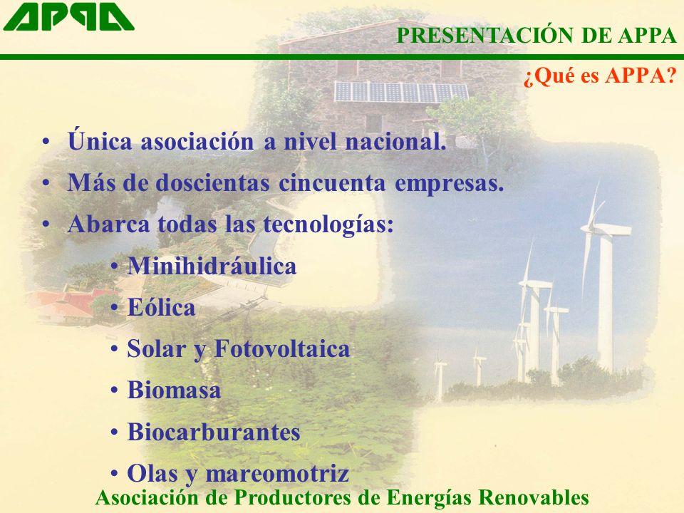 Única asociación a nivel nacional. Más de doscientas cincuenta empresas. Abarca todas las tecnologías: Minihidráulica Eólica Solar y Fotovoltaica Biom