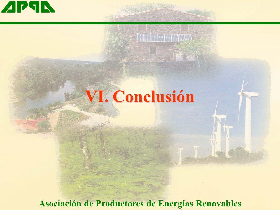 VI. Conclusión Asociación de Productores de Energías Renovables