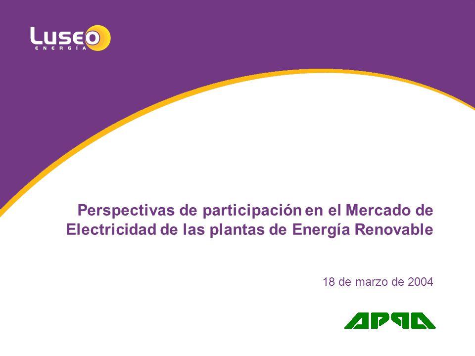 Perspectivas de participación en el Mercado de Electricidad de las plantas de Energía Renovable 18 de marzo de 2004