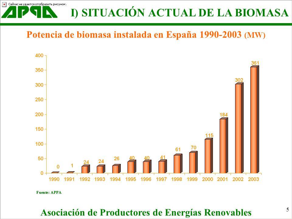 5 Asociación de Productores de Energías Renovables Potencia de biomasa instalada en España 1990-2003 (MW) I) SITUACIÓN ACTUAL DE LA BIOMASA