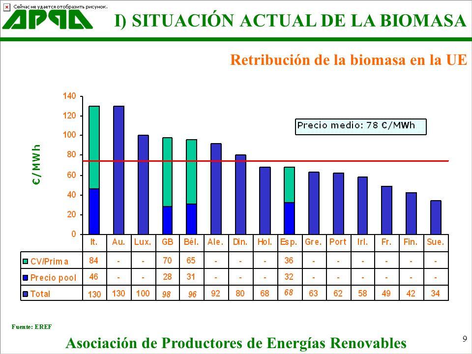 10 II) La biomasa en el RD 436/04 Asociación de Productores de Energías Renovables