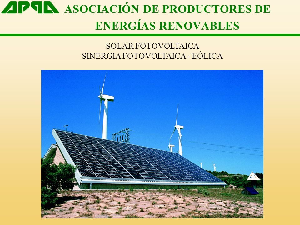 ASOCIACIÓN DE PRODUCTORES DE ENERGÍAS RENOVABLES SOLAR FOTOVOLTAICA SINERGIA FOTOVOLTAICA - EÓLICA