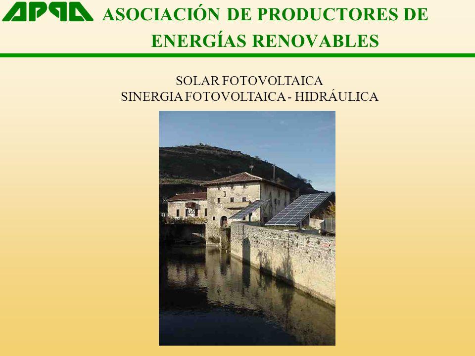 ASOCIACIÓN DE PRODUCTORES DE ENERGÍAS RENOVABLES SOLAR FOTOVOLTAICA SINERGIA FOTOVOLTAICA - HIDRÁULICA
