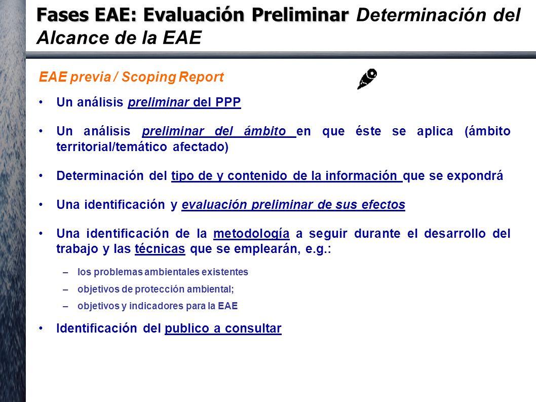 Fases EAE: Evaluación Preliminar Fases EAE: Evaluación Preliminar Determinación del Alcance de la EAE EAE previa / Scoping Report Un análisis preliminar del PPP Un análisis preliminar del ámbito en que éste se aplica (ámbito territorial/temático afectado) Determinación del tipo de y contenido de la información que se expondrá Una identificación y evaluación preliminar de sus efectos Una identificación de la metodología a seguir durante el desarrollo del trabajo y las técnicas que se emplearán, e.g.: –los problemas ambientales existentes –objetivos de protección ambiental; –objetivos y indicadores para la EAE Identificación del publico a consultar