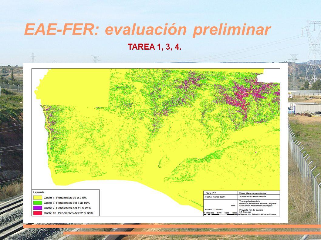 EAE-FER: evaluación preliminar TAREA 1, 3, 4.