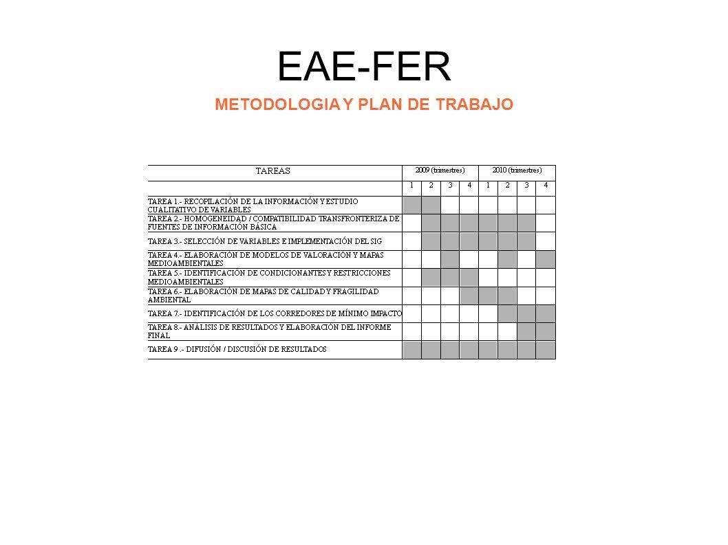 EAE-FER: evaluación preliminar TAREA 7