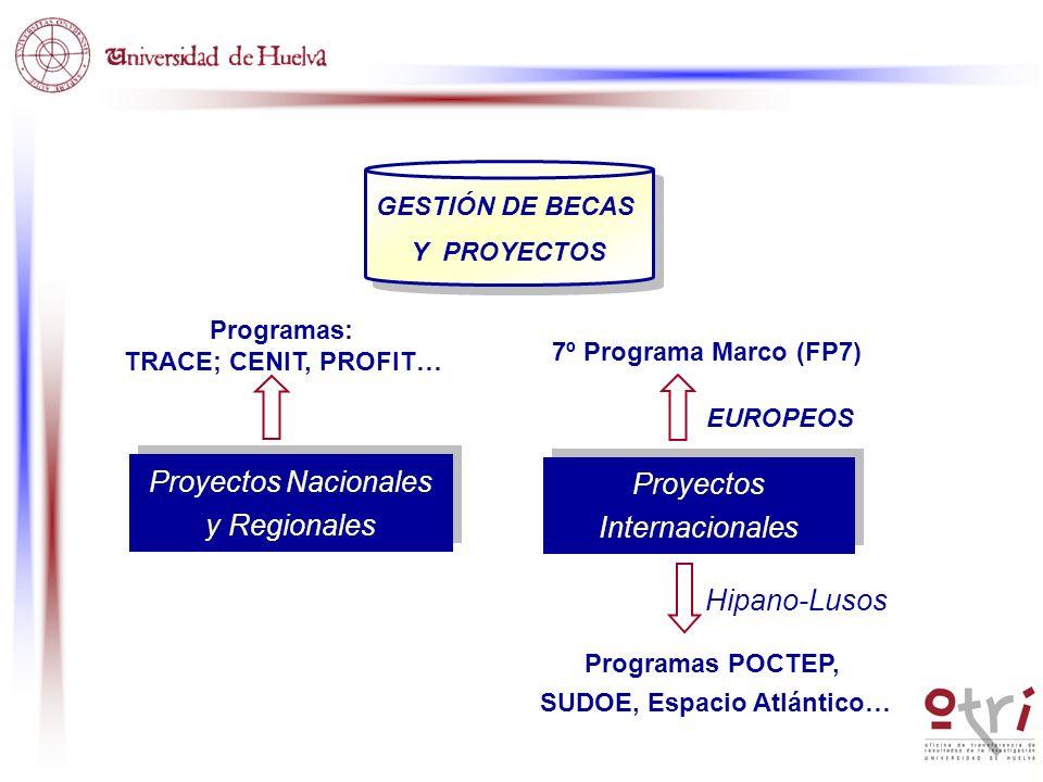 7º Programa Marco (FP7) EUROPEOS Proyectos Nacionales y Regionales Proyectos Nacionales y Regionales Programas: TRACE; CENIT, PROFIT… Hipano-Lusos Pro