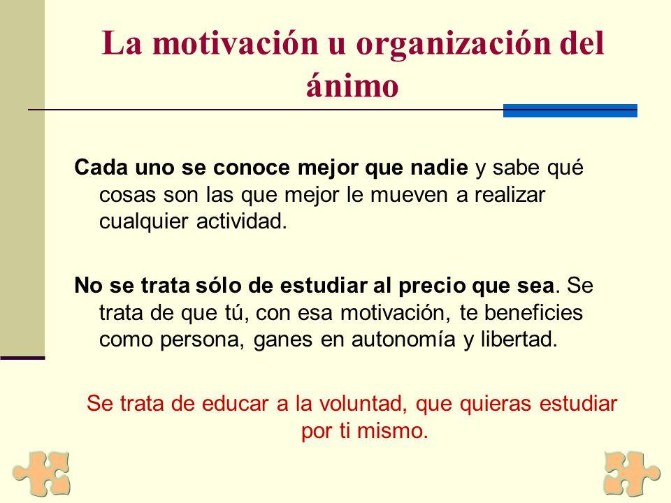 Tipos de Motivaciones Extrínsecas: proporcionan alguna clase de beneficio material, Intrínsecas: proporcionan una satisfacción personal, Trascendentes: Orientadas al logro de la mejora.