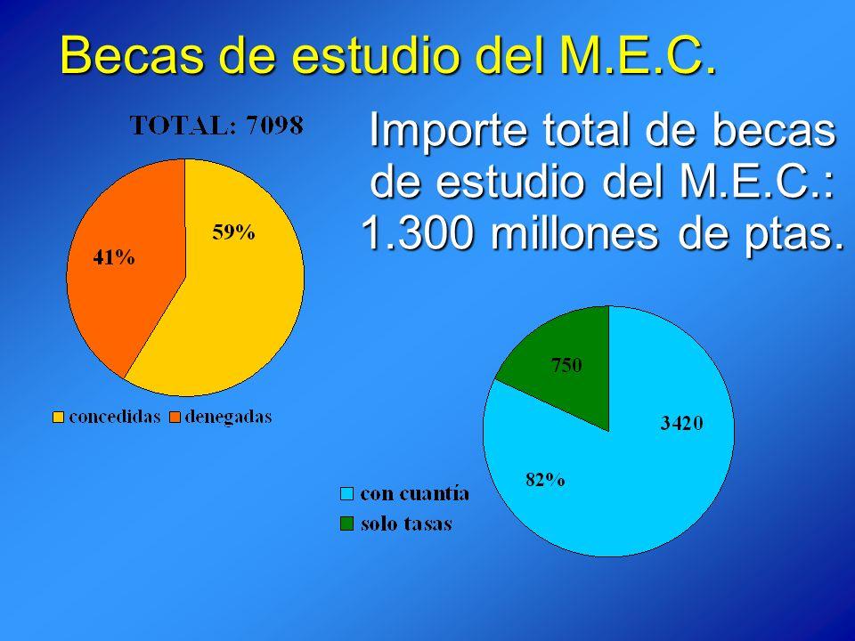 Becas de estudio del M.E.C. Importe total de becas de estudio del M.E.C.: 1.300 millones de ptas.