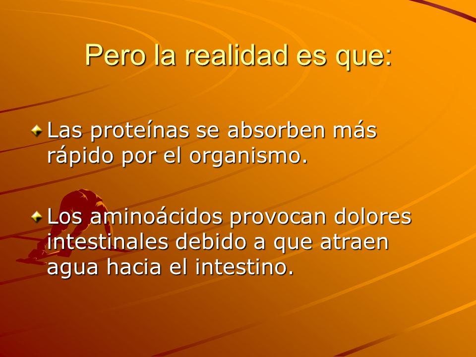 Pero la realidad es que: Las proteínas se absorben más rápido por el organismo. Los aminoácidos provocan dolores intestinales debido a que atraen agua