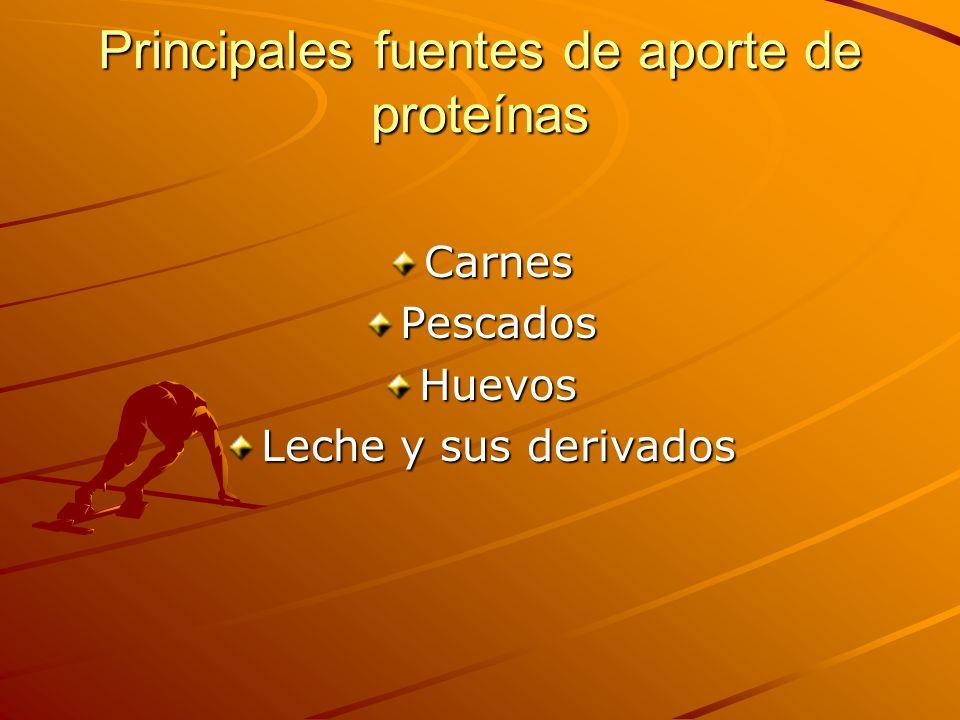Principales fuentes de aporte de proteínas CarnesPescadosHuevos Leche y sus derivados
